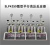 SLP4250微型平行高压反应器