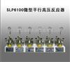 SLP6100微型平行高压反应器