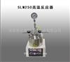 SLM250高温反应器