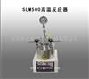 SLM500高温反应器