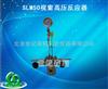 SLM50视窗高压反应器