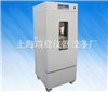 HSX-250HC平衡式恒温恒湿箱