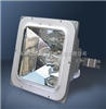 NFC9100-J150海洋王加油站灯具 NFC9100-J150 防眩棚顶灯 海洋王油站灯价格 油站灯厂家