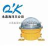 BFC8183QK-海洋王BFC8183固态免维护防爆灯 固态LED防爆灯 BFC8183-24V 24V海洋王防爆灯