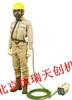 HR/HM-12/2进口电动送风式长管呼吸器(2人10米管)