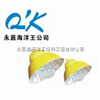 BLC8600-N400QK-BLC8600防爆道路平台灯 BLC8600-N400 BLC8600-N250 海洋王防爆道路灯 平台灯