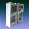 SPX-300智能生化培养箱/微生物培养箱