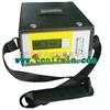 氩气分析仪/便携式氩气纯度分析仪(热导)型号:ZH6289