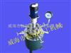 316L电加热反应釜,订做实验室反应釜,实验室用反应釜规格全,高压釜价格低
