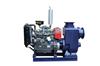 BYXZXWC大流量柴油机自吸排污泵
