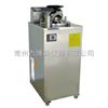 YXQ-LS-100A内排式压力蒸汽灭菌器