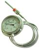 WTZ/WTQ-280径向软管连接温度计