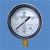 上仪四厂 YPF-100A膜片压力表