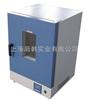 DGG系列立式200度电热恒温鼓风干燥箱  岛韩干燥箱 底部加热干燥箱 恒温箱