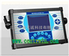 电能质量分析仪 型号:ZH4248