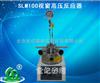河南热销SLM100视窗高压反应器