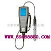 光学溶解氧测量仪 主机 美国 型号:ZH3976