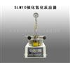河南促销SLM10催化氢化反应器