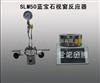 河南供应SLM50蓝宝石视窗反应器