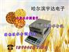 青稞快速水分测量仪,谷物水分测量仪