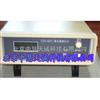 ZH10141二氧化碳分析仪|CO2检测仪