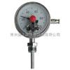 WSSX-302電接點雙金屬溫度計