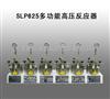 河南热卖SLP625多功能高压反应器