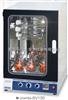 韩国FINEPCR 分子杂交箱Combi-SV120