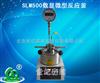 郑州直销SLM500数显微型反应釜