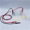 DYCP-31BN琼脂糖水平电泳仪(微型)