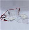 DYCP-31DN琼脂糖水平电泳仪(小号)