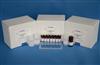 兔子Ⅲ型前胶原氨基端肽(PⅢNT)ELISA试剂盒