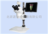 LCD-80102立体视频显微镜