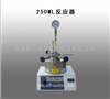 长期批发250ML反应器