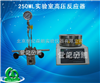 大量供应250ML实验室高压反应器