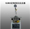 SLM50江苏定制高压反应器