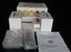 大鼠结合珠蛋白/触珠蛋白酶免试剂盒,(Hpt/HP)ELISA检测试剂盒