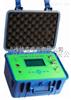 HNPH2-200背带式氢气纯度分析仪