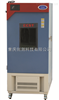 CSH-222SD药品稳定性试验箱