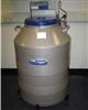 泰来华顿液氮罐LS3000