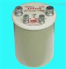 BZ6/1大功率標准電阻