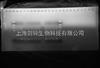 上海普通电泳PCR实验