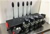 特价HAWE哈威R系列径向柱塞泵